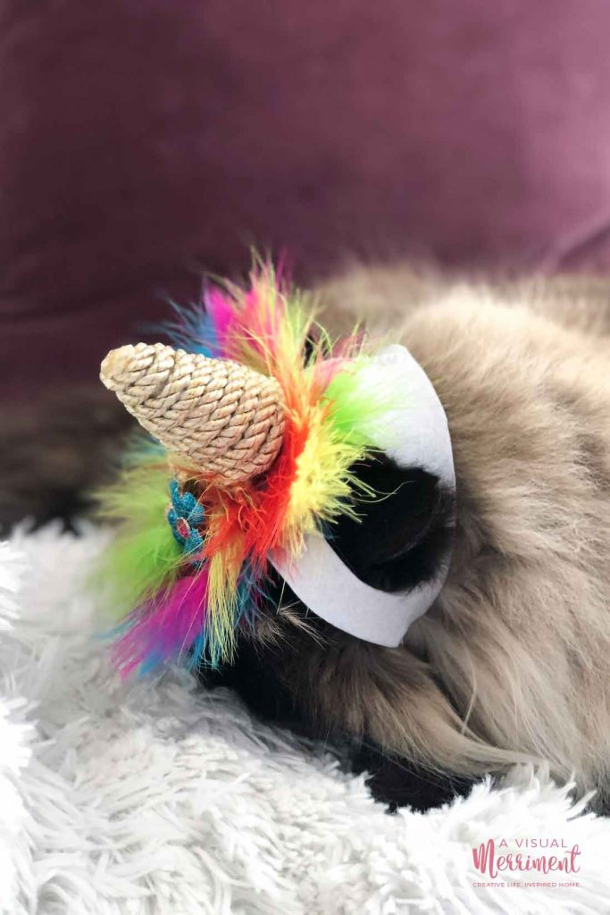 cat wearing unicorn costume with head bowed