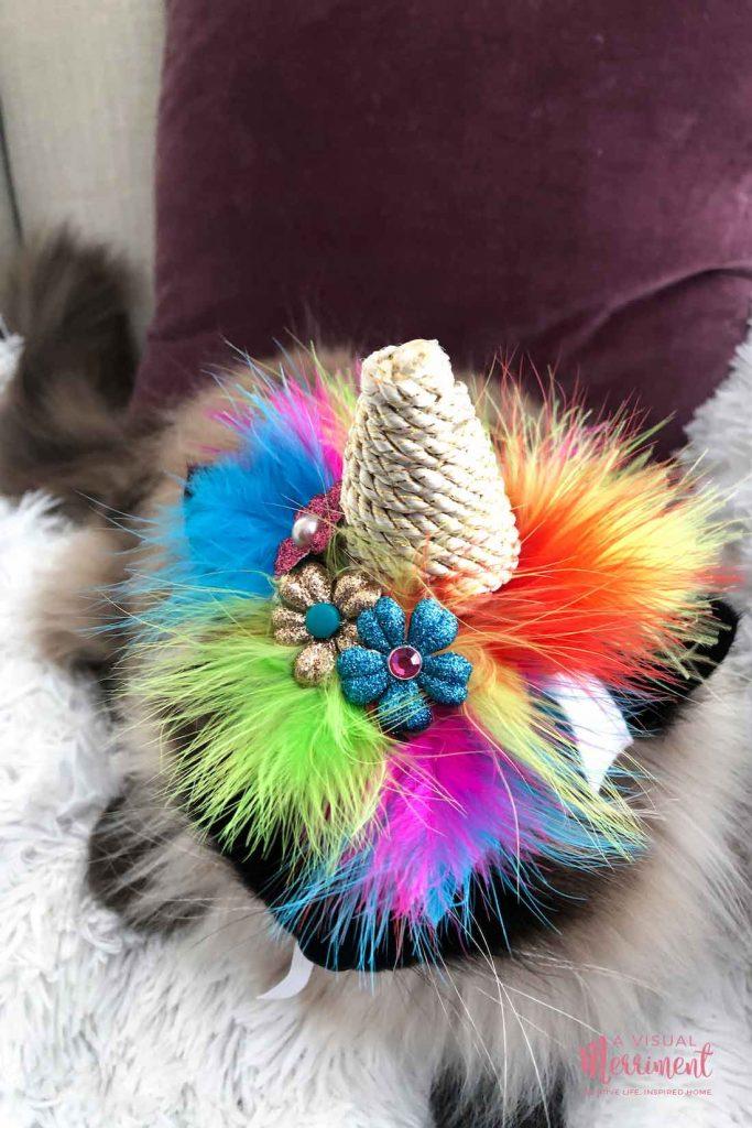 close up of unicorn pet hat