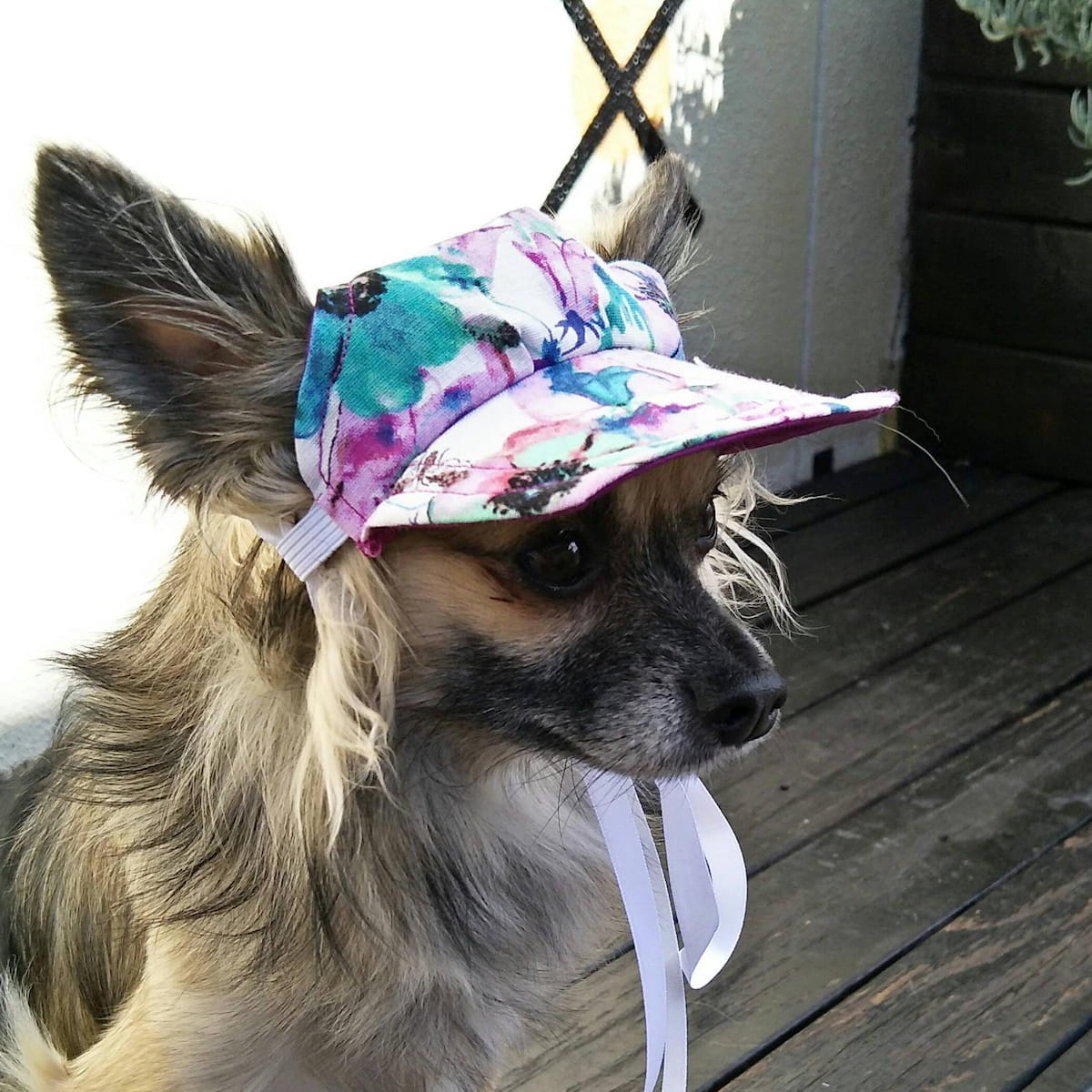 Etsy gift find floral dog hat