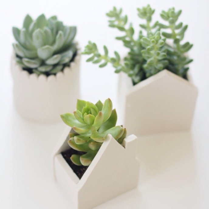 11 Cute Indoor Planter DIY Ideas | handmade clay pots | A Visual Merriment Round Up