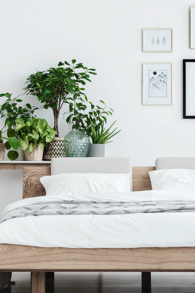 white bedroom with plants for room makeover