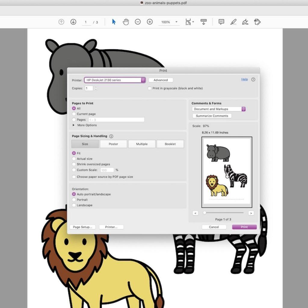 zoo animal printer settings