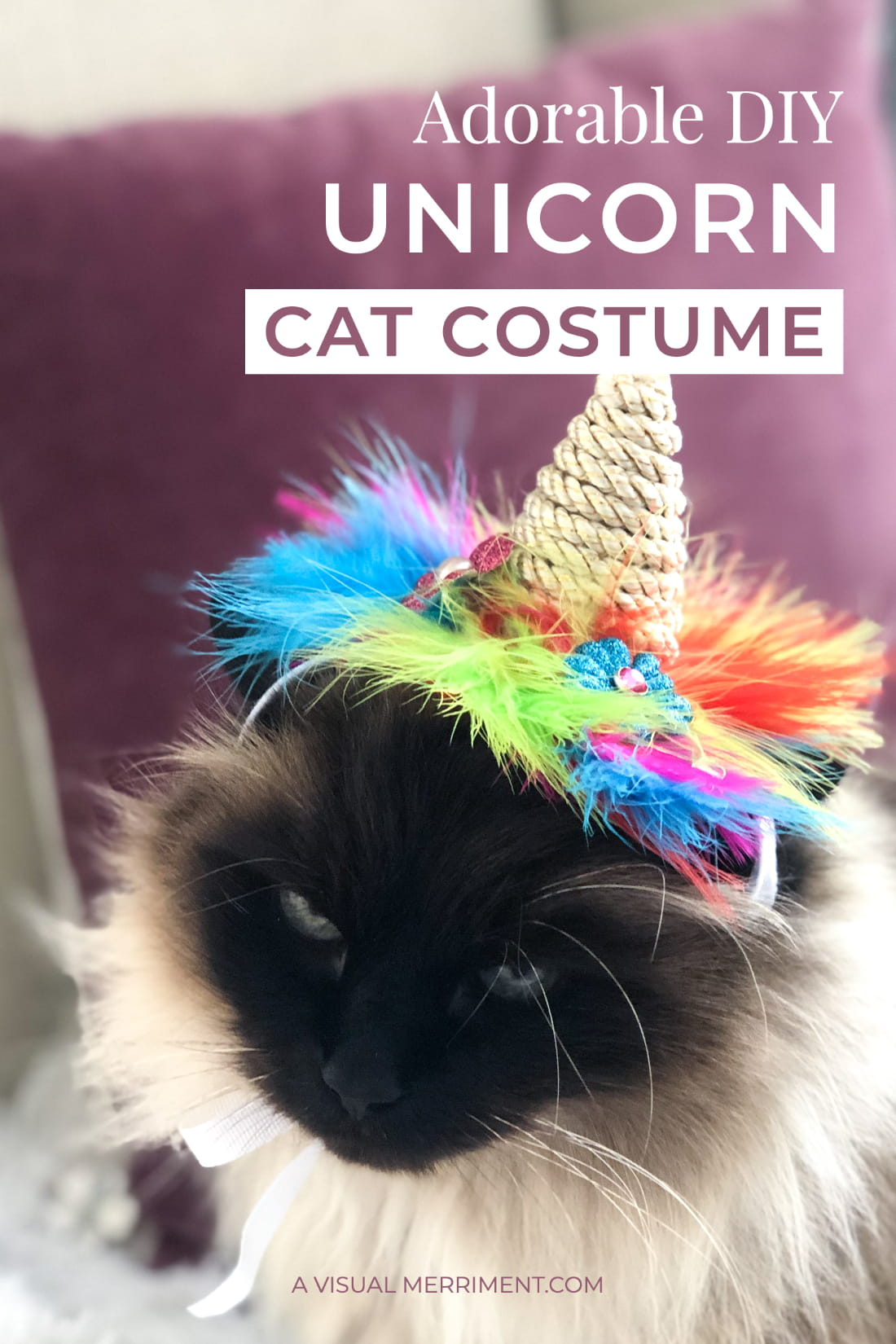 cat wearing unicorn hat graphic